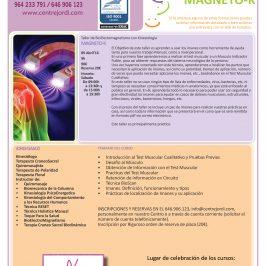 Taller de BioElectroMagnetismo MAGNETO-K