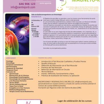Taller de BioElectroMagnetismo
